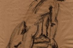 narme_dessin_27-1-1